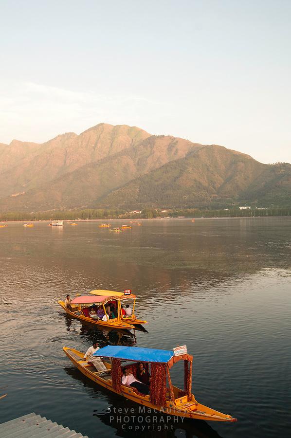 Traditional Kashmiri shikaras, or gondolas, at sunset, Dal Lake, Srinagar, Kashmir, india..