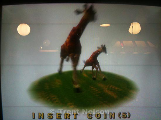 . Friday, October 30 2009.Jambo! Safari  videogame in arcade