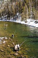 Steelhead fishing salmon river, Stanley, Idaho
