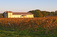 The newly constructed winery building seen over the green yellow golden vineyard in evening late afternoon autumn sunshine Domaine Vignoble des Verdots Conne de Labarde Bergerac Dordogne France