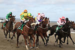 Laytown Races  13/9/12