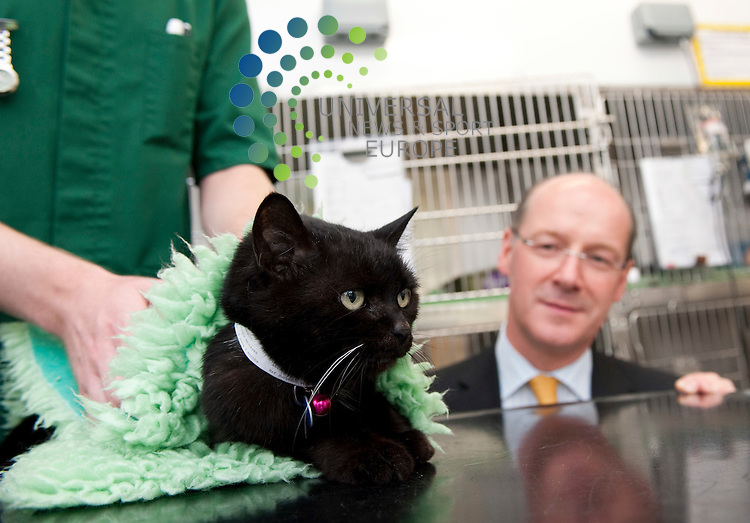 Finance Minister John Swinney with Molly the Cat. The Minister was on hand to officially open the new £15 million, small Animal Hospital. The hospital, which was funded through 3 areas, Government Funding, Private Investment and through commercial gain. Although a teaching hospital, treatment of animals is run on a commercial level to self sustain the project...Glasgow University Bearsden Campus, 464 Bearsden Road , Glasgow , Scotland G61 1QH.  Picture: Euan Anderson/Universal News And Sport (Scotland) 06th July 2010.
