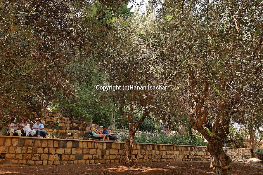Israel, the Upper Galilee. Gan Habaron in Rosh Pina