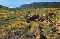 Tablelands showing the Earth's mantle made up of Peridotite which is high in iron<br /> Gros Morne National Park<br /> Newfoundland & Labrador<br /> Canada