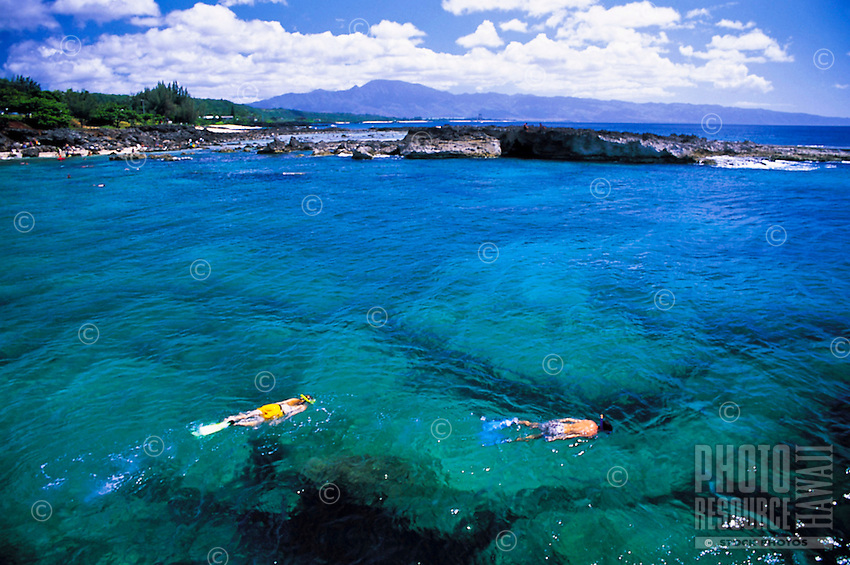 Snorkeling Oahu's north shore