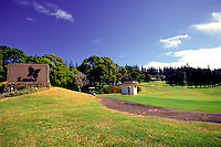 A golfer putts on the green at the fabulous Kapalua golf course on the island of Maui.