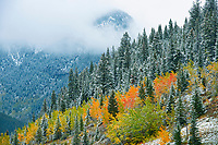 Snowfall and autumn colors  in the Canadian Rockies<br />
