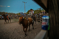 Cowboy. Jaripeo or rodeo in the ejido cuquiarachi. Cuquiarachic, belonging to the municipality of Fronteras, Sonora. Daily life and cowboy culture in the towns of northern Mexico. (Photo: LuisGutierrez / NortePhoto.com)<br /> <br /> <br /> jaripeo o rodeo en el ejido cuquiarachi. Cuquiarachic, perteneciente al municipio de Fronteras, Sonora. Vida cotidiana y cultura vaquera en los pueblos del norte de Mexico.  (Foto: LuisGutierrez / NortePhoto.com)