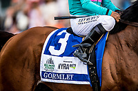 ELMONT, NY - JUNE 10: Gormley at Belmont Park on June 10, 2017 in Elmont, New York. (Photo by Alex Evers/Eclipse Sportswire/Getty Images)