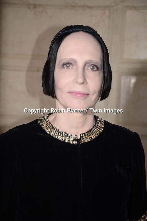 Mary McFadden attends the New York Landmarks Consevancy's 20th Annual Living Landmarks Celebration on November 14, 2013 at the Plaza Hotel in New York City.