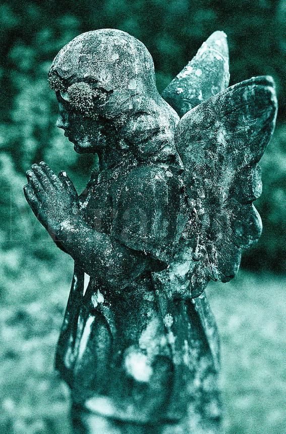 Weathered angel.