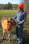 Farmer and Heifer Dressed in Hunting Colors during Hunting Season in New Hampshire USA