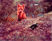GIORDANO, REALISTIC ANIMALS, REALISTISCHE TIERE, ANIMALES REALISTICOS, paintings+++++,USGI1052,#A#,fox
