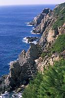 Europe/Provence-Alpes-Côte d'Azur/83/Var/Ile de Porquerolles: Le Cap d'Armes et le rocher de la croix