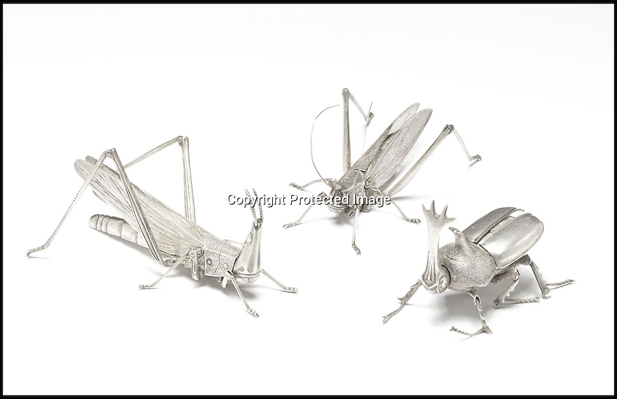 BNPS.co.uk (01202 558833)<br /> Pic: Bonhams/BNPS<br /> <br /> ****Please use full byline****<br /> <br /> A hand-made set of incredibly detailed silver insects has emerged and is expected to fetch £80,000 at auction.<br /> <br /> The beautiful collection features 12 life-life creatures including a dragonfly, praying mantis, stag beetle, hornet, locust, cricket, grasshopper and butterfly.<br /> <br /> They were created by Takase Torakichi, also known as Takase Kozan, who was a well known artist in Japan in the late 19th century.