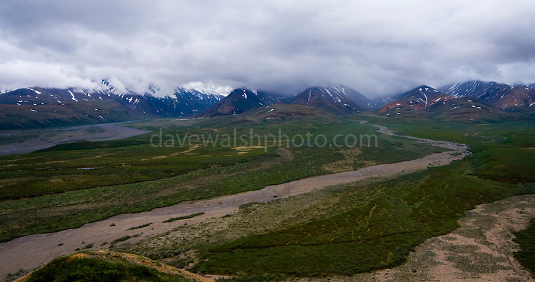 The Plains of Murie, Denali National Park, seen from Polychrome Pass...