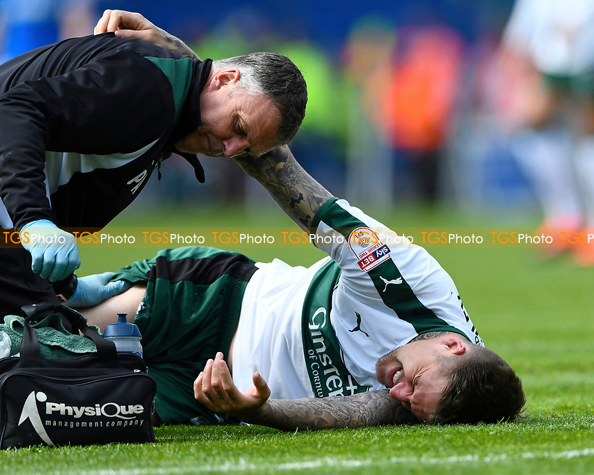 Injury concern for Sonny Bradley of Plymouth Argyle during Portsmouth vs Plymouth Argyle, Sky Bet EFL League 2 Football at Fratton Park on 14th April 2017