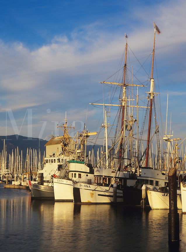 Fishing boats and the tall ship Californian in back ground docked in Santa Barbara harbor