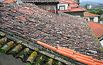 Roof tiles, Viano do Castelo, Portugal