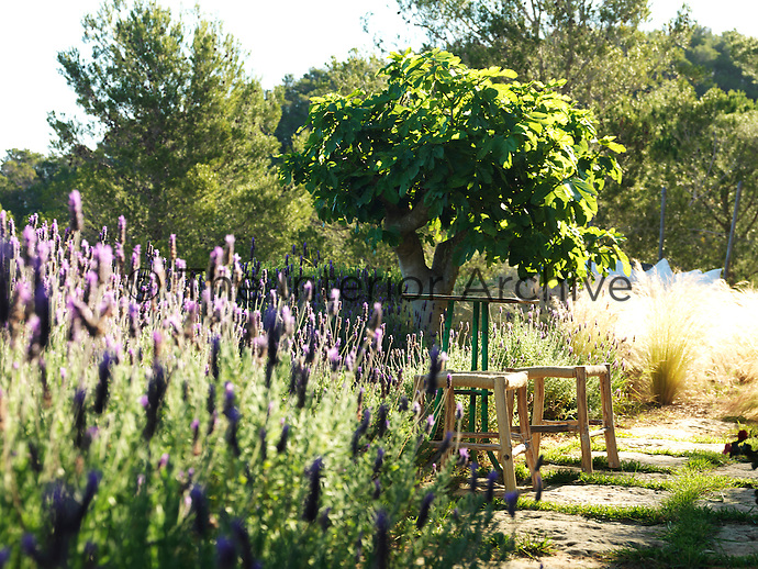 The grounds are full of hideaways in which to enjoy the surrounding views