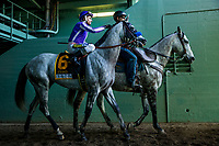 ARCADIA, CA - MAY 27: Cupid and Rafel Bejarano before the Gold Cup at Santa Anita Park  on May 27, 2017 in Arcadia, California. (Photo by Alex Evers/Eclipse Sportswire/Getty Images)