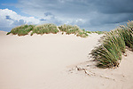 Windy afternoon in the Lodbjerg Dunes in Thy National Park, Denmark