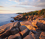 The rugged Acadia seacoast in early morning during autumn in New England, Acadia National Park, Maine, USA