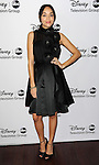 """Ashley Madekwe arriving at the Disney ABC Televison Group Hosts """"TCA Winter Press Tour"""" held at the Langham Huntington Hotel in Pasadena, CA. January 10, 2013."""