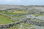 mur de pierres. ïle d'Inishmore.stone wall. Inishmore Island