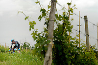 ITALIA. 22-05-2014. Sutton Christopher -Aus- (Sky) durante su participación en la etapa 12 a cronómetro individual entre  Barbaresco y Barolo con una distancia de 42,2 Km en la versión 97 del Giro de Italia hoy 22 de mayo de 2014. / Sutton Christopher -Aus- (Sky) during his participation on the 12th stage, single stopwatch, between Barbaresco and Barolo with a distance of 42.2 km in the 97th version of Giro d'Italia today May 22th 2014.   Photo: VizzorImage/ Fabio Ferrari / LaPresse<br /> VizzorImage PROVIDES THE ACCESS TO THIS PHOTOGRAPH ONLY AS A PRESS AND EDITORIAL SERVICE AND NOT IS THE OWNER OF COPYRIGHT; ANOTHER USE HAVE ADDITIONAL PERMITS AND IS  REPONSABILITY OF THE END USER