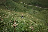 September 20, 2014 - Meo Vac (Vietnam). A woman harvests corn on the ridge of the Ma Pi Leng Pass, between Dong Van and Meo Vac. © Thomas Cristofoletti / Ruom