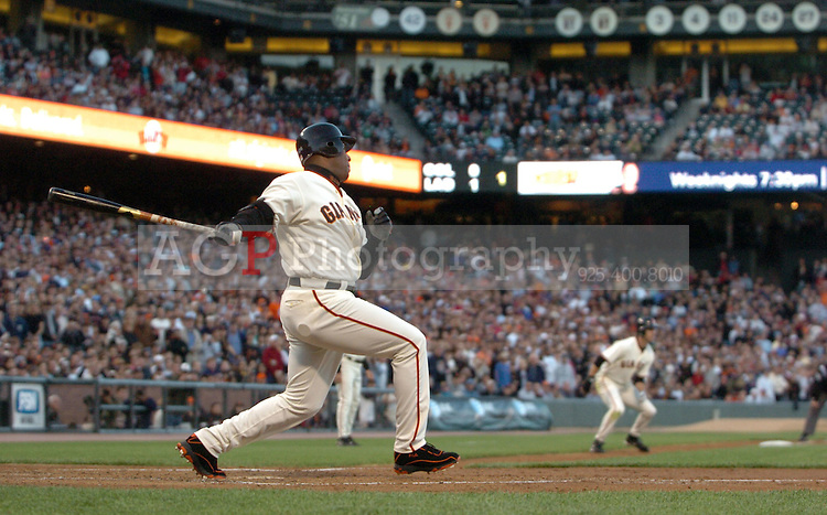Barry Bonds rips an RBI single against the St. Louis Cardinals during first inning action against the St. Louis Cardinal at At&T Park in San Francisco Tuesday May 23, 2006. (Photo by Alan Greth)