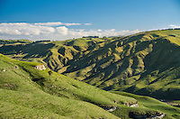 Central Plateau New Zealand images