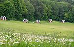 Gietrzwałd, 2014-05-18. Sanktuarium Maryjne w Gietrzwałdzie - kapliczki polne.
