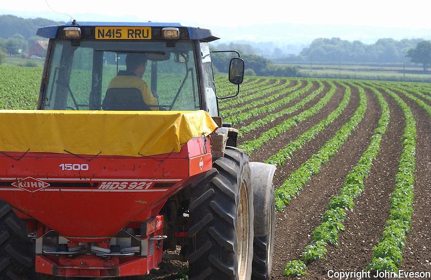 Operator Dominic Burt spreading slug pellets onto Maris Piper and King Edward potatoes on C. and M. Hawkins' 1,500 acre Manor Farm, Ashington, Yeovil, Somerset. The 40 acre crop will go to Branston Potatoes to supply Tescos supermarket.