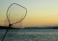 Fish net, Everett Washington.
