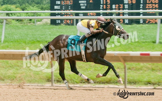 Tooth N Claw winning at Delaware Park on 7/4/13