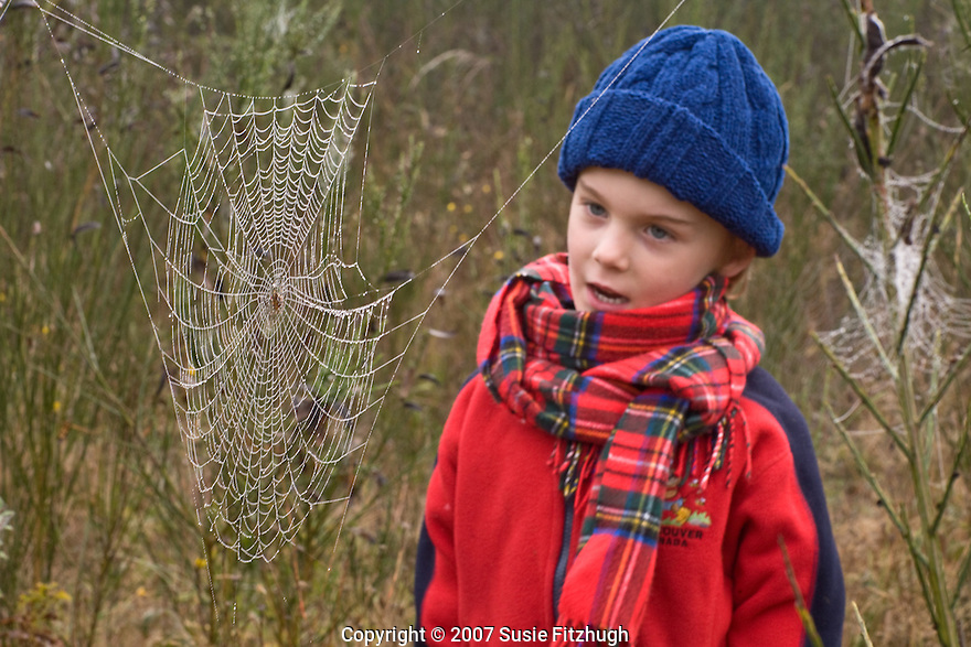 Sunday morning, October 14: inspecting the many spiderwebs at Blackberry Park.