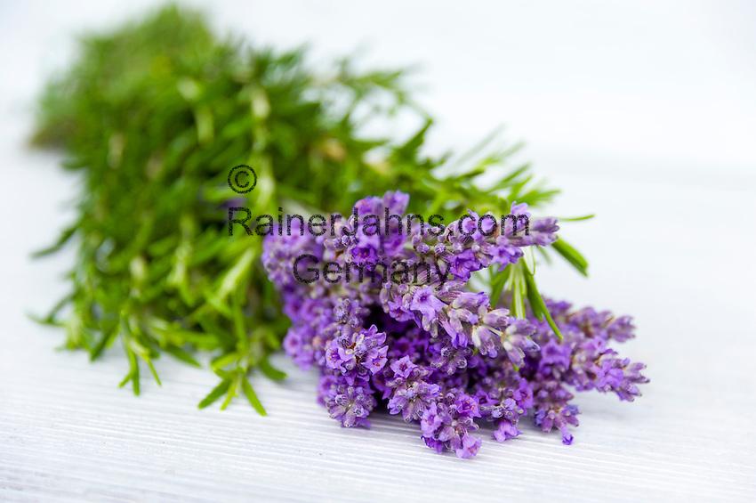 a bunch of lavender | Ein Strauss Lavendelblueten