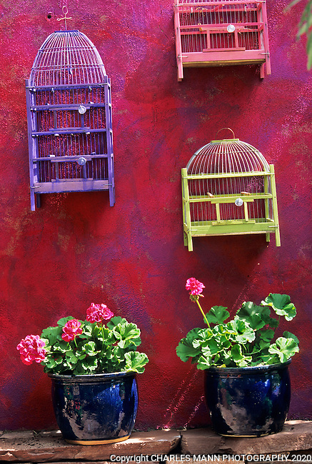 Deena Perry of Santa Fe used her interior decorating skills to bring a bit of pizzaz to a garden patio by sponging red and purple paint on a wall and then hanging some colorful wooden birdcages to make a quirky and playful compsition.