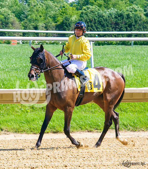 Janine Melnitz winning at Delaware Park on 6/9/16