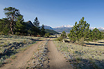 gravel drive above Dry Gulch in the Rocky Mountains, Estes Park, Colorado, USA