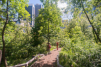 Visitors enjoy the Hallett Nature Sanctuary in Central Park in New York on Monday, May 16, 2016. Closed since 1934 the  4 acre natural landscape in the middle of the city is a bird sanctuary and will be opened for limited times to the public only 20 people entering at a time. Hundreds lined up to be let in to admire the landscape. (© Richard B. Levine)
