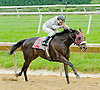 Tappinintovictory winning at Delaware Park on 5/21/12.Jose Caraballo's 4th win of the day!