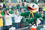 The duck from the University of Oregon high fives fans during their Fiesta Bowl pep rally...Tribune Photo: Meg Williams ..1-2-13, DUCKS, U OF O, Fiesta bowl, pep rally, Tostitos Fiesta Bowl, University of Oregon, Phoenix, Saltwater Fields
