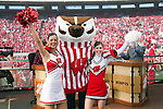 ESPN's Lee Corso puts on the Bucky Badger outfit during ESPN College Gameday at Camp Randall Stadium prior to the Wisconsin Badgers NCAA college football game against the Ohio State Buckeyes on October 16, 2010 at Camp Randall Stadium in Madison, Wisconsin.(Photo by David Stluka)