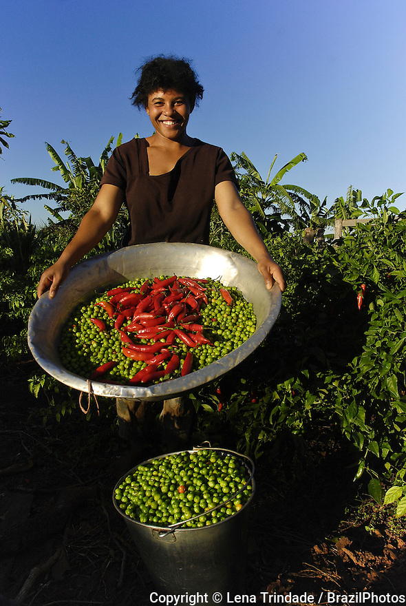 Rural worker, pepper harvesting, portrait of smiling black young woman. Mato Grosso do Sul State, Brazil.