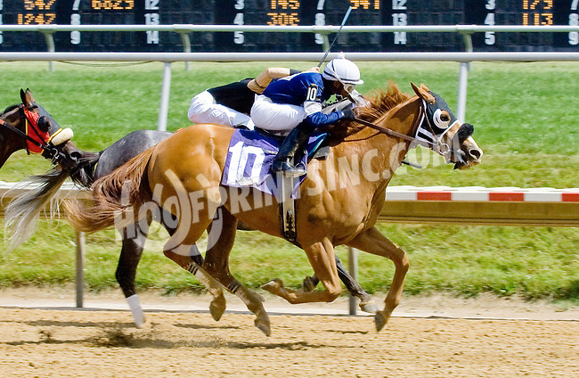 Yes It's Mine winning at Delaware Park on 6/13/12