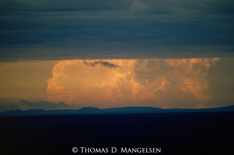 Large storm clouds gather on the horizon of the Serengti plains, Tanzania.