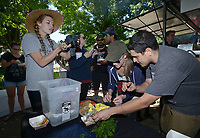 NWA Democrat-Gazette/BEN GOFF @NWABENGOFF<br /> Samantha Farnsworth (from left), a bartender at Undercroft, takes pictures as Madelyn Smith, manager of Pressroom, learns how to shuck clams from Daniel Zalsman, a cook at Pressroom, Sunday, May 21, 2017, during a field day for employees of RopeSwing Hospitality Group and their guests at the Rios family farm in Little Flock. RopeSwing Hospitality Group, which operates Pressroom, The Preacher's Son, Undercroft, and Record in downtown Bentonville, has been active in sourcing regional food and supporting the farm-to-table movement. The social event was a chance for their staff to roll up their sleeves and connect with their supplier by helping out on the farm. Rafael Rios, owner and chef of Yeyo's Mexican Grill food truck, and his family have had a presence at the Bentonville Farmers Market over the past decade, but are shifting their focus this year to supplying local restaurants.